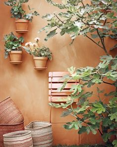 Balcony Design, Garden Design, Front Garden Landscape, Dubai Miracle Garden, Brick Patterns Patio, Pintura Exterior, Magic Garden, Olive Garden, Walled Garden