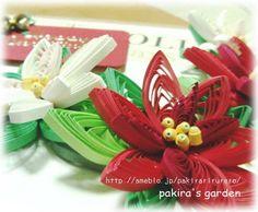 http://ameblo.jp/pakirarirurero/  ポインセチアでメリークリスマス