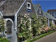 Tiny rose-covered Nantucket cottage....