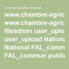 www.chambre-agriculture-normandie.fr fileadmin user_upload National FAL_commun publications Normandie svpc-syrphe.pdf