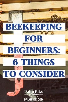 Beekeeping is one of the most rewarding hobbies a person can have. You're not only learning a vital skill, you're also helping to keep our honey bee p Beekeeping For Beginners, Gardening For Beginners, Honey Bee Hives, Honey Bees, Bee Hive Plans, Raising Bees, Bee Boxes, Bee Hives Boxes, Backyard Beekeeping