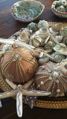 All hand decorated with crystals and pearls by me. All hand decorated with crystals and pearls by me. Seashell Painting, Seashell Art, Seashell Crafts, Sea Crafts, Nature Crafts, Coastal Christmas, Christmas Crafts, Christmas Ornaments, Seashell Ornaments