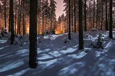 11 φωτογραφίες από το χειμώνα της Φινλανδίας - ΜΕΓΑΛΕΣ ΕΙΚΟΝΕΣ - LiFO