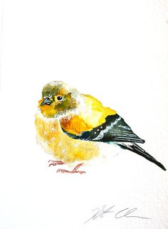 Watercolor Painting Original Goldfinch Bird Painting by WoodPigeon, $25.00