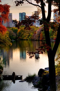 New York City Feelings - Central Park  (by EJP Photo)