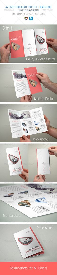 Trifold Brochure - the use of color is great. I like it