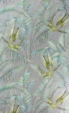 Papier peint Sunbird