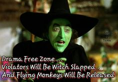 Clever Sentence, Halloween Wood Crafts, Halloween Ideas, Drama Free, Famous Words, Word Up, Wizard Of Oz, Magick, Witchcraft