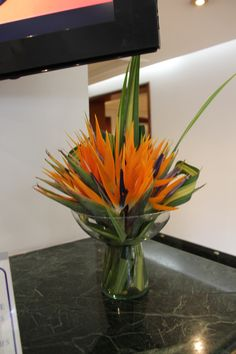 Floral Arrangement - birds of paradise