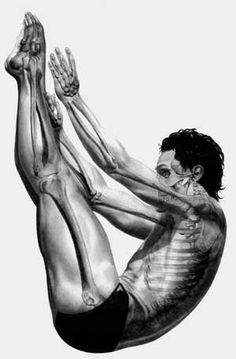 Stretching and Flexibility. Yoga, splits, etc. textbook explanations of hows and whys of muscle flexibility