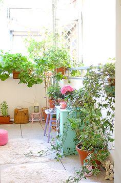 balcony with pretty plants Tiny Balcony, Balcony Plants, Balcony Garden, Indoor Garden, Indoor Plants, Outdoor Gardens, Home And Garden, Patio Plants, Pot Jardin