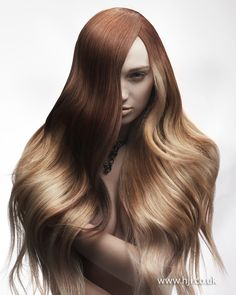 Chris Williams Schwarzkopf Professional Colour Technician of the Year - British Hairdressing Awards 2012.
