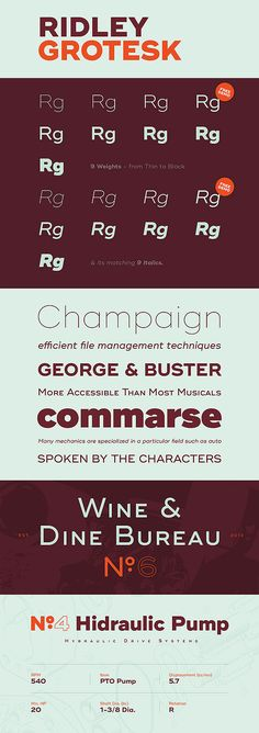 Ridley Grotesk Typface with free fonts