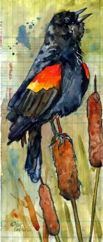 Red-Winged Blackbird on Cattails, painting by artist Kay Smith