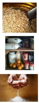 """Food Storage for """"Dummies"""" (who are SMART enough read this!)One Good Thing by Jillee 
