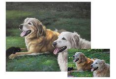 Two Pets Custom Oil Portrait on OneKingsLane.com