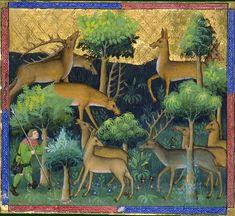 Le livre de chasse, folio 65   ci devise comment on doit aller en quête pour ouir raire les cerfs