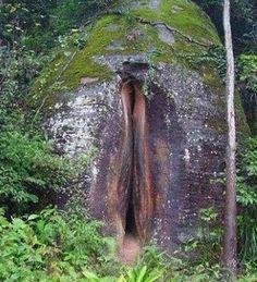 This Volcanic Vulva is listed (or ranked) 2 on the list Accidental Vaginas in the Wild
