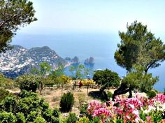 For invaluable insights on the island of Capri, I reached out to Gillian McGuire, a regular visitor, to share some insider tips on the island.