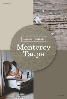 Live Colorfully: Monterey Taupe