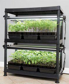 Hydroponic Equipment, Hydroponic Supplies, Best Led Grow Lights, Indoor Plants, Indoor Gardening, Vertical Farming, Hydroponics System, Garden Pests, Garden Supplies
