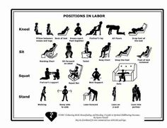 Positions in labor