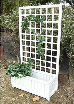 Garden Design Garden Planter Box with Trellis - Garden Planter Box with Trellis is a simple and naturally beautiful way to bring climbing vines or flowers to your garden, patio, or to the side of your home. White Planter Boxes, Planter Box With Trellis, Wooden Trellis, Garden Planter Boxes, Fence Planters, White Planters, Garden Arbor, Diy Garden, Wooden Garden