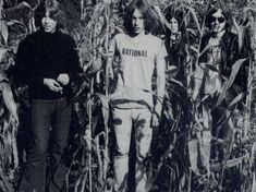 """THIS PRIMITIVE SOUND on Instagram: """"The Stooges #IggyPop #RonAsheton #ScottAsheton #DaveAlexander #TheStooges"""" Iggy And The Stooges, Proto Punk, Iggy Pop, Die Young, Glam Rock, Big Star, Music Is Life, Dumb And Dumber, Rock And Roll"""