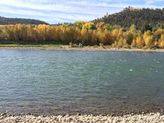 Yellowstone River behind our house today Oct. 10, 2014