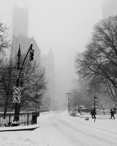 #winter #wintertime #fall #cold #invierno #nyc #ny #BrooklynBridge #blizzard2016 #cold #winterwonderland #wonderland #snow nature #ice #freezing #bestnatureshot #natureaddict #natureelite #nature_sultans  #ilovewinter #winterscoming #love #blacknwhite #bnw #picoftheday #bestseason #instagold #tagsta_nature #windy #snow #cityhall #bnw_society by optical_sonata
