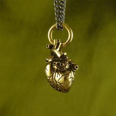 Small Anatomical Gold Plated Heart Necklace by Lost Apostle