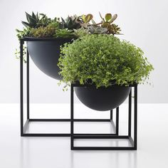 Shop online the iconic Kubus Bowl + Kubus Candle Holder By Lassen. Made from lacquered steel, Kubus By Lassen is the epitome of Scandinavian minimalistic design Indoor Garden, Indoor Plants, Outdoor Gardens, Home And Garden, Ikea Plants, Pot Plants, Hanging Plants, Decoration Plante, Deco Floral