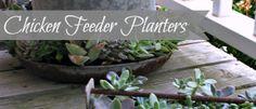 Chicken Feeder Planters {Unique Flower Pots} - Cottage in the Oaks