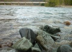 Piedras bañadas.