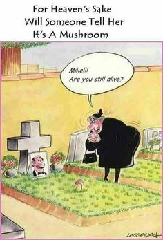 Humor - Funny Cartoons, Pictures & Messages