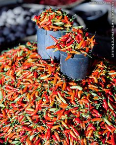 peppers market in Bitung, North Sulawesi, Indonesia. Fruits And Vegetables, Veggies, Plum Juice, Indonesian Cuisine, Spicy Recipes, Yummy Recipes, Some Like It Hot, Stuffed Hot Peppers, Sweet And Spicy