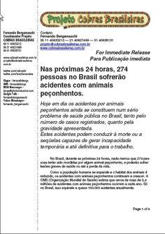 Nas próximas 24 horas 274 pessoas no Brasil sofrerão acidentes com animais peçonhentos.  Hoje em dia os acidentes por animais peçonhentos ainda se constituem num sério problema de saúde pública no Brasil, tanto pelo número de casos registrados quanto pela gravidade apresentada. Estes acidentes podem conduzir à morte ou a seqüelas capazes de gerar incapacidade temporária e até definitiva para o trabalho.
