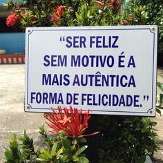 Pousada Mar e Mata Guarapari Espírito Santo Brasil Frase Quotes