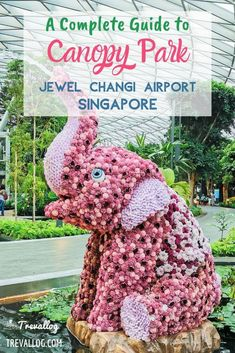 Canopy Park is a MUST DO in Jewel, Changi Airport, Singapore. Find out important information and our best tips for maximizing your visit to Canopy Park here. Asia Travel, Malaysia Travel, Croatia Travel, Hawaii Travel, Italy Travel, Singapore Travel Tips, Singapore Changi Airport, Travel Destinations, Amazing Destinations