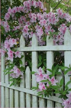 Fence with attention to detail that blends well with flower garden.