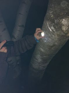 After Dark Reflector Hunt, great fun any time. And a super idea for a sleepover or birthday party game at night.