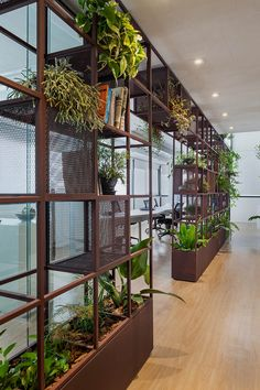 Open VC Office: A Cozy Work Environment with A Harmony of Integration and Privacy - Open office Open Space Office, Office Workspace, Architecture Office, Futuristic Architecture, Architecture Design, Drawing Architecture, Architecture Panel, Architecture Portfolio, Office Interior Design