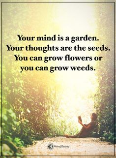 quotes Your mind is a garden your thoughts are the seeds. You can grow flowers or you can grow weeds.