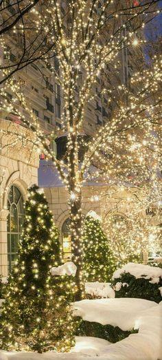 19 best Christmas spirit images on Pinterest Christmas time