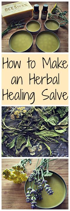 How to Make an Herbal Salve~ With healing herbs you can find in your yard! How to Make an Herbal Salve~ With healing herbs you can find in your yard! Herbal Remedies, Health Remedies, Home Remedies, Natural Remedies, Holistic Remedies, Natural Treatments, Healing Herbs, Medicinal Plants, Natural Healing