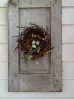 My shutter/nest :-)