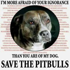 I do not understand how people became so ignorant that they started blaming the victim and not the one doing the wrongs. No such thing, as a bad pitbull.
