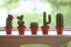 I'm having tons of fun crocheting these little cacti. They come together in an hour or two, so it's a great project for an evening when you want to have something to show at the end of it! It's als... More