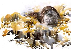 """Saatchi Online Artist: Lucy Newton; Watercolor 2013 Painting """"Otter"""""""