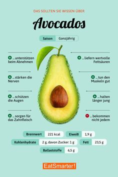 Avocado-Was kann sie?Avocado-Was kann sie? Avocado Nutrition, Nutrition Tips, Health And Nutrition, Holistic Nutrition, Nutrition Chart, Avocado Dessert, Superfood, Healthy Tips, Healthy Recipes